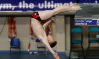 British Gas Diving Championships 2014 Day Two