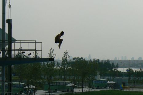 Diving at the 2011 World Championships