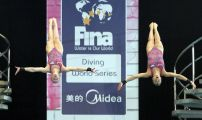 Edinburgh Diving World Series 2013 Day One