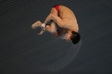 FINA/NVC Diving World Series 2014 Day Three