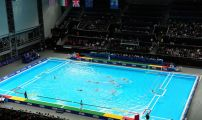 VISA International 2012: Great Britain 4 - 11 Hungary