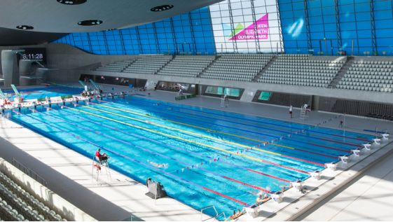 The Home Of Swimming Swimming